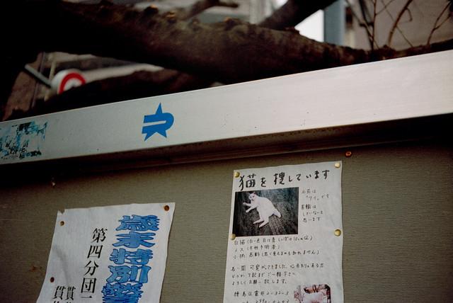2014012531a_2