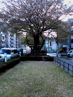 Senkawa-dori_Yukuharu_050417_181301