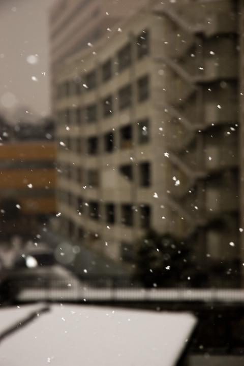 Snowing_20060121