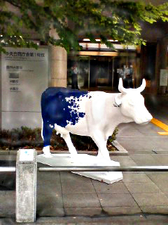 Cow_060907_083801_0001
