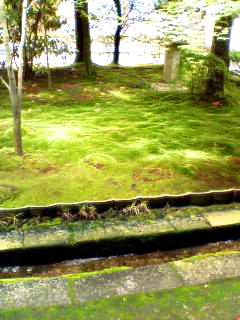 Gardens_060610_104601