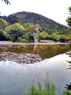 Gardens_060610_110202