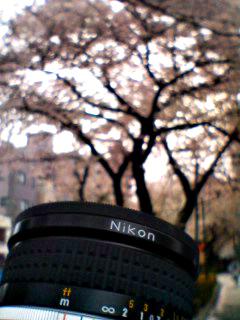 Kodachrome_070401_160201_0001