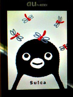 Penguin_akatombo_img040